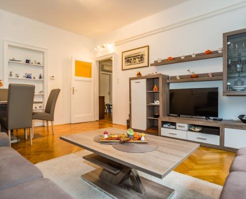 3,5 комнатная квартира в центре Любляны